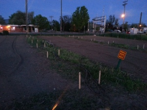 Stakes are in marking the West side of the garden plots.